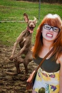 Image of girl and dog photobomb