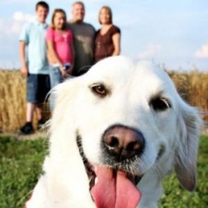 Image of family picture and dog photobomber
