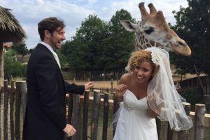 Image of newly wedded and giraffe