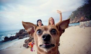 Image of girls with dog photobomb