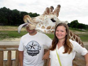 Image of Giraffe photobombs