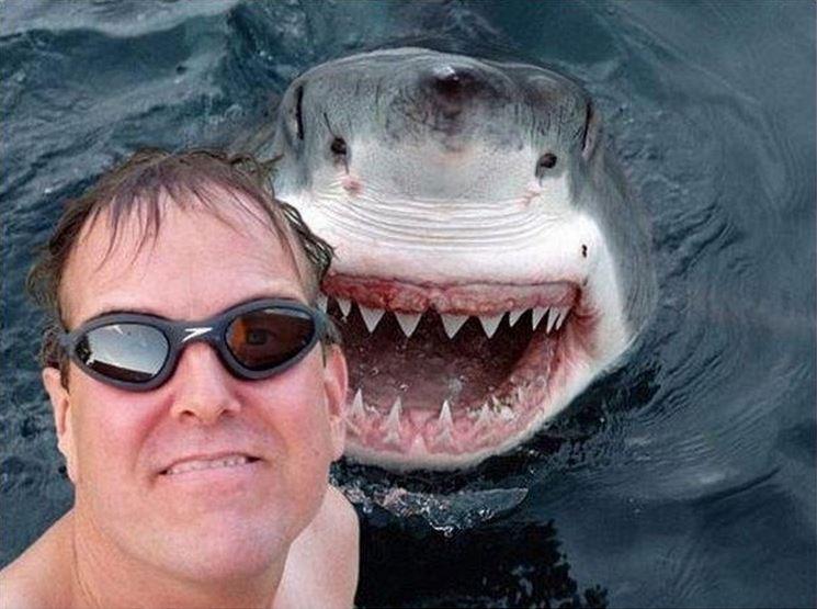 Image of aMan Photobombed by the Shark